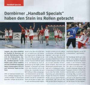 Handball-2015-Bericht